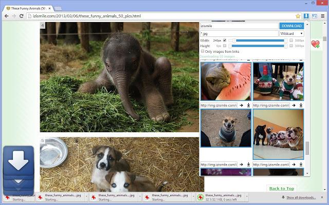 Image Downloader图片