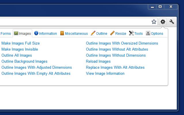 Web Developer图片