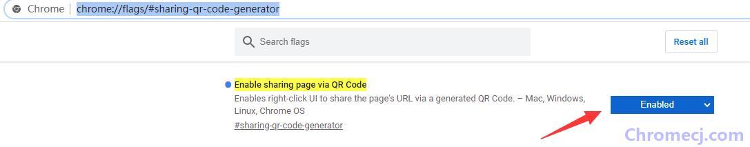 开启Chrome浏览器的网页二维码生成功能的方法