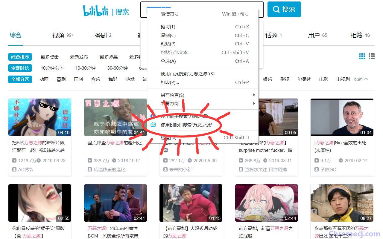 bilibili搜索插件简介
