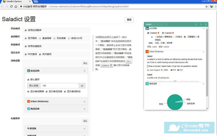 沙拉查词:网页划词翻译插件